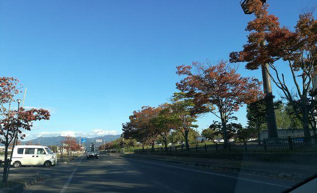 街の中も、もう紅葉だ。紅葉が青空に映える。